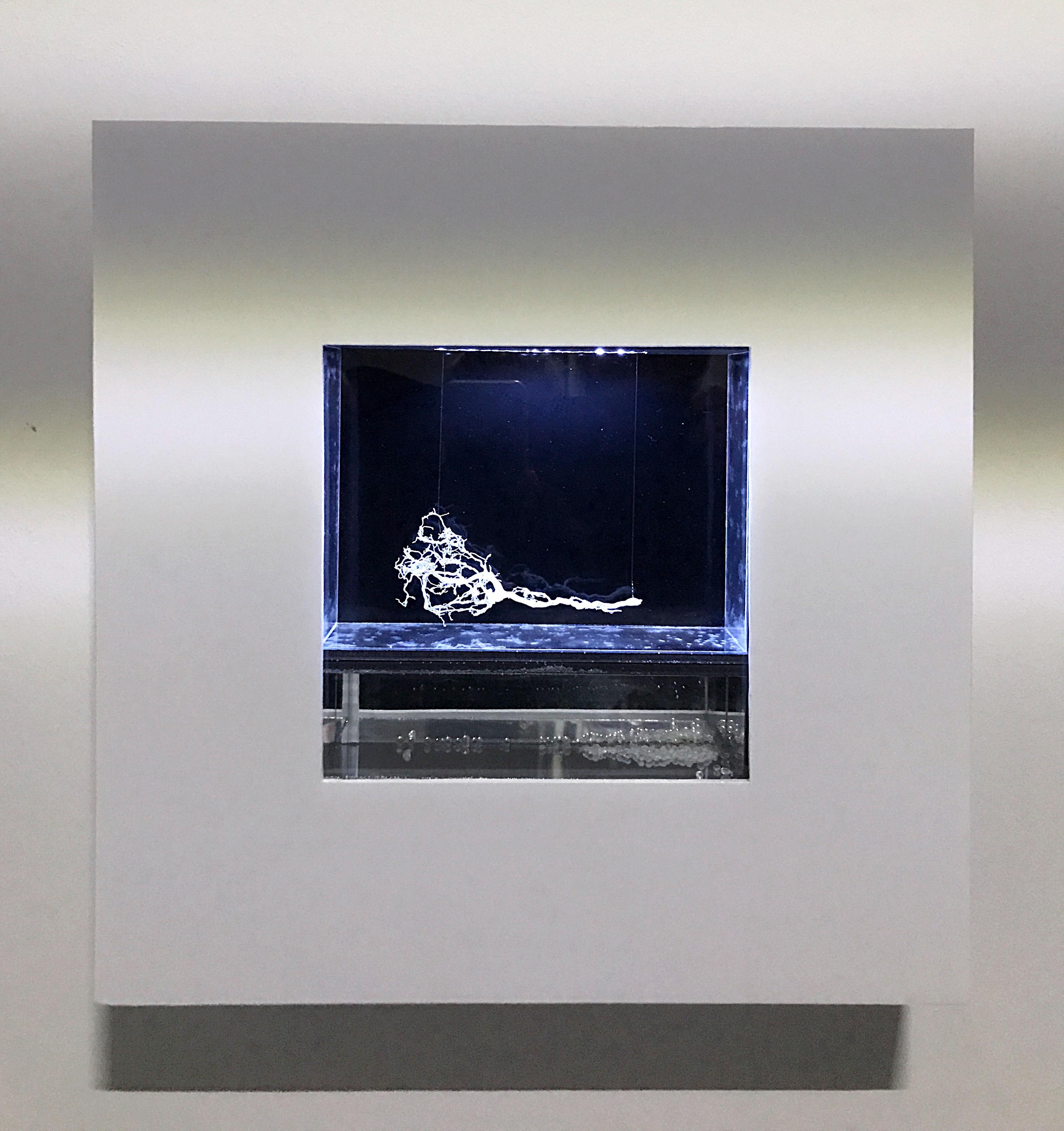 DER AMBROSISCHE SCHEIN Objekt : 40 x 40 x 7 cm Holz Spiegel Karton Led Licht Glas Autolack metallic Silica gel